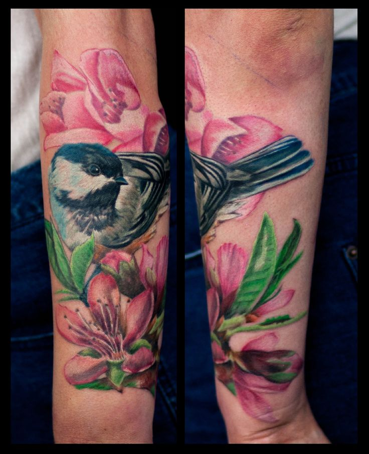 Beautiful Realistic Chickadee Tattoo By Australian Realism: 29 Best Apple Branch Ideas Images On Pinterest