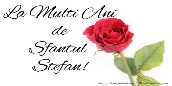 La multi ani de Sfantul Stefan!