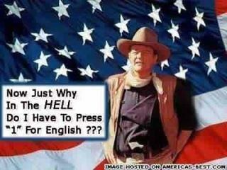 1 for English: Laughing, American Stuff, Style, Quotes, John Wayne, Johnwayn, Funny Stuff, Humor, Favorite