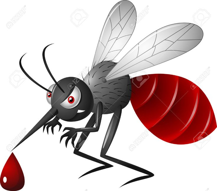 Angry Cartoon Mosquito Royalty Free Cliparts, Vectors, And Stock ...