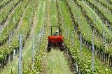 What are the incentives for investments in Czech agriculture?