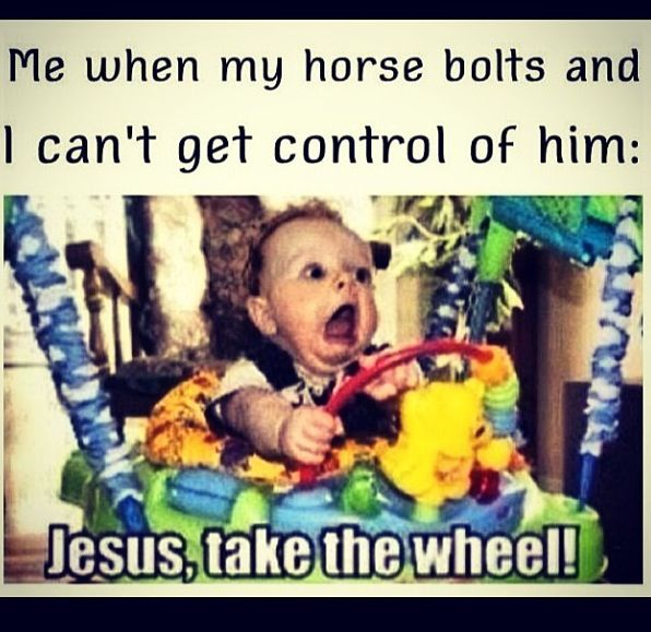 Me when my horse bolts and I can't get control of him: Jesus, take the wheel! #horsehumor #stylemyride @SMRequestrian http://www.stylemyride.net/