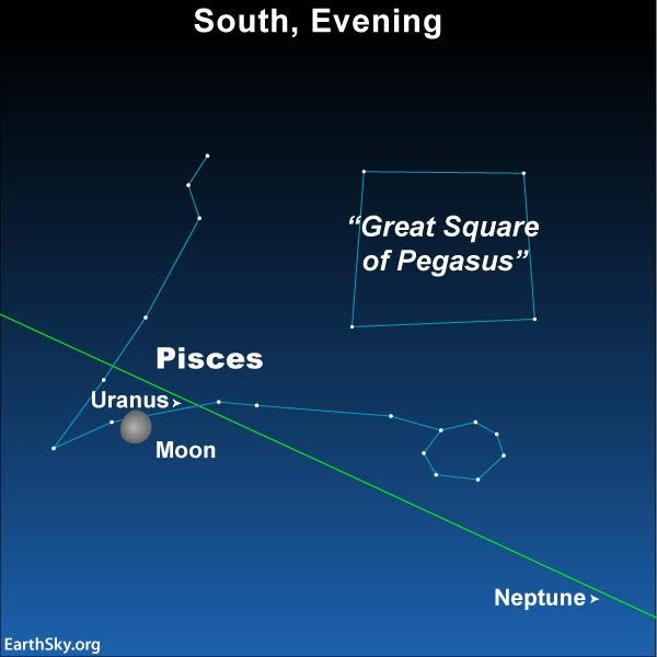 Peak night for the Geminids in 2016 is December 13 (morning of December 14).  Best around 2 a.m.  Moonlight interferes but these meteors are bright. Maybe you'll catch a cool photo!
