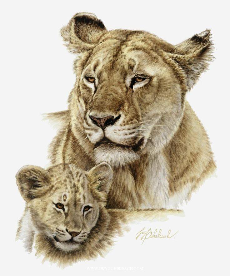 PORTRAITS OF THE BIG CATS 14