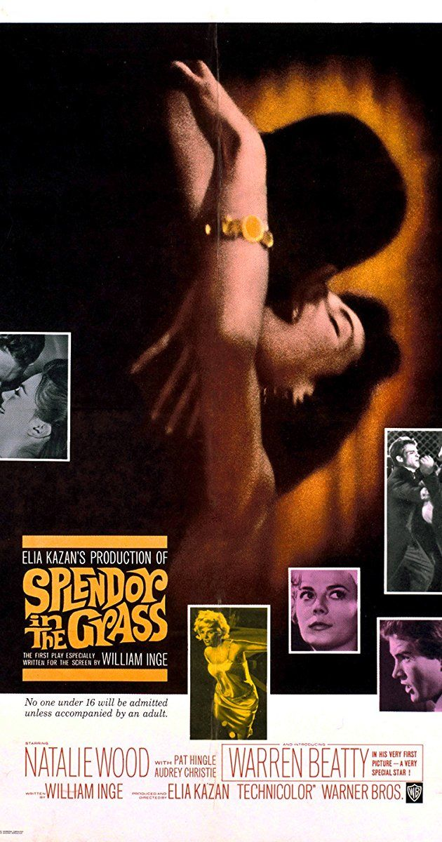 Directed by Elia Kazan. With Natalie Wood, Warren Beatty, Pat Hingle, Audrey Christie. A fragile Kansas girl's love for a handsome young man from the town's most powerful family drives her to heartbreak and madness.