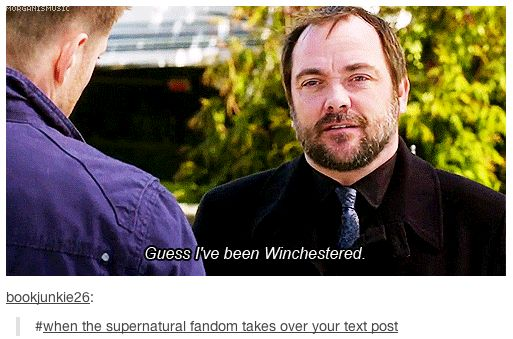 When the Supernatural fandom takes over your Tumblr post.... I love my fandom.