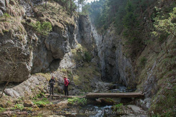 Hiking inside the ravines. #mountains #Slovakia #hiking  www.simplycarpathians.com