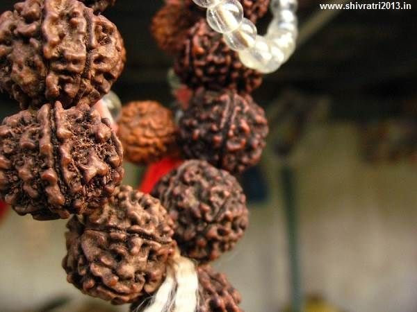 rudraksha wallpapers pictures images photos hd