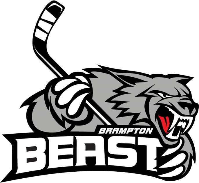 203 Best Hockey Team Logos Images On Pinterest Hockey Logos