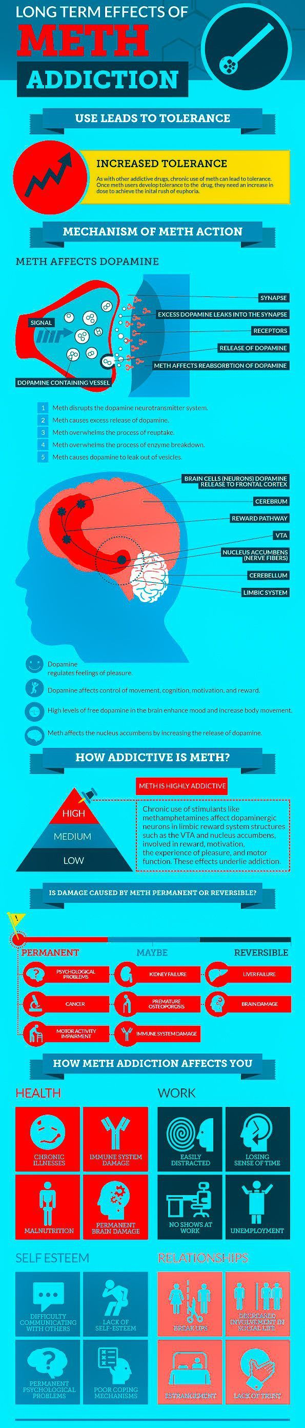 Psychology : Infographic: Meth Effects Addicaid