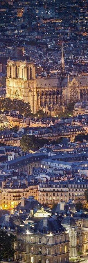 Belle prise de la catédrale de Notre-Dame de Paris. Puis, il y a toujours les toits de Paris! - Beautiful shot of Notre Dame Cathedral in Paris. And then there will always be the rooftops of Paris too!