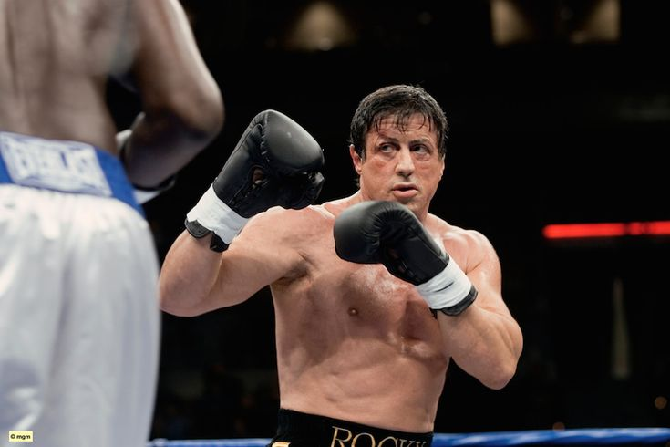 Watch: Baby Rocky Balboa, Photos Of 2-year-old Charlie Magilavy - http://www.morningnewsusa.com/watch-baby-rocky-balboa-photos-2-year-old-charlie-magilavy-2389649.html
