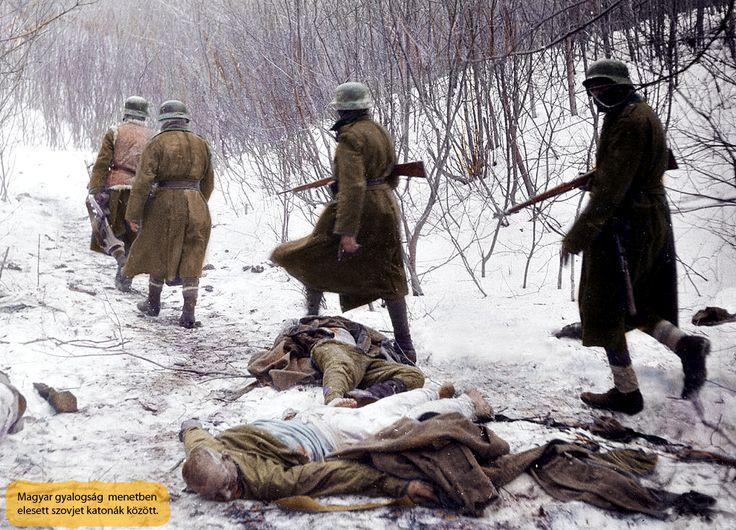 Keleti front. Magyar gyalogság menetben ,mellettük elesett szovet katonák holtestei. 1942-43.