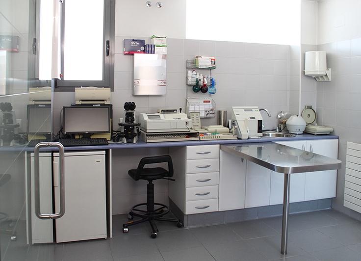 Nuestro centro Centro Veterinario Pozuelo Clinica
