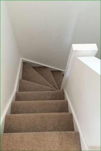 Carpeted stairs case