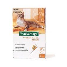 Advantage soluţie spot-on pentru pisici de talie mică şi pentru iepuri-animale de companie conţine 10 % imidacloprid.