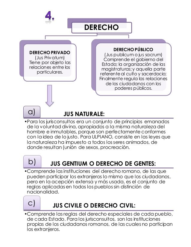 Derecho Romano Mapas Conceptuales Law Student Law Notes Studying Law