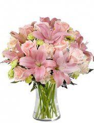 růžové lilie - květiny online