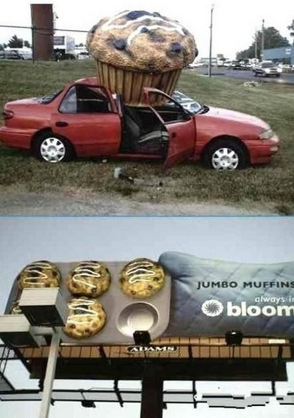 The 25 Best Funny Accidents Ideas On Pinterest Funny Pictures