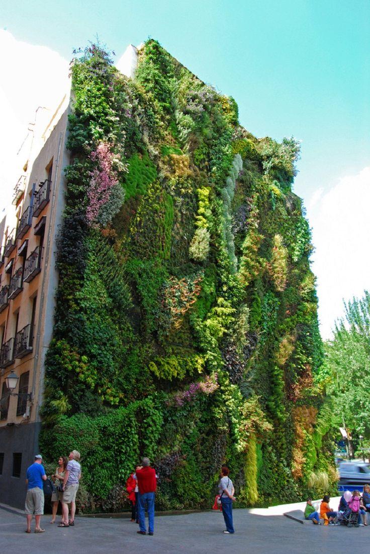 Vertical Garden. By Patrick Blanc in Madrid, Spain.