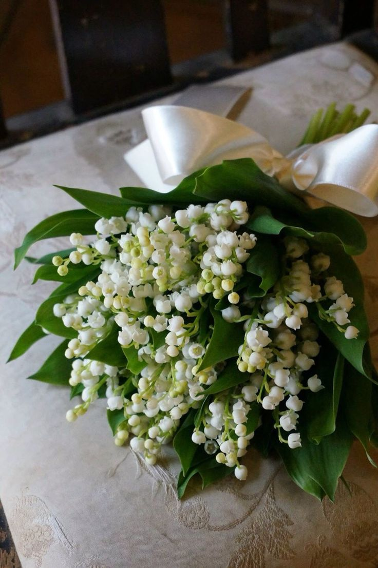 37 Best Images On Pinterest Lily Of The Valley Floral