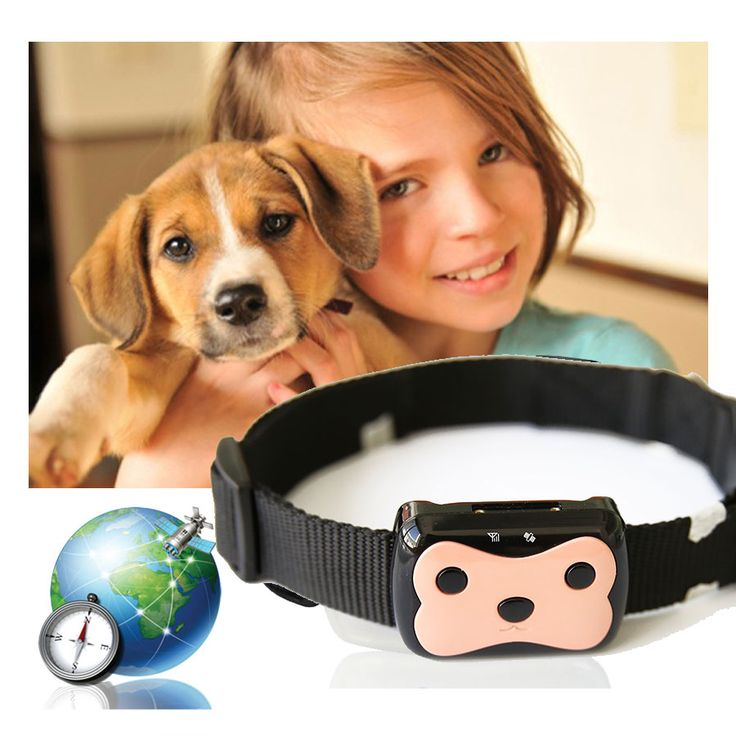 New Super MiNi Waterproof Pets Tracker Long Standby Time Dog Cat Personal GPS Tracker/IOS /Andriod App Free Shipping