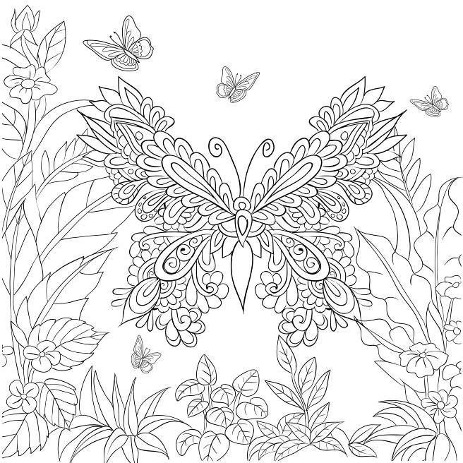 Butterfly Garden Coloring Pages