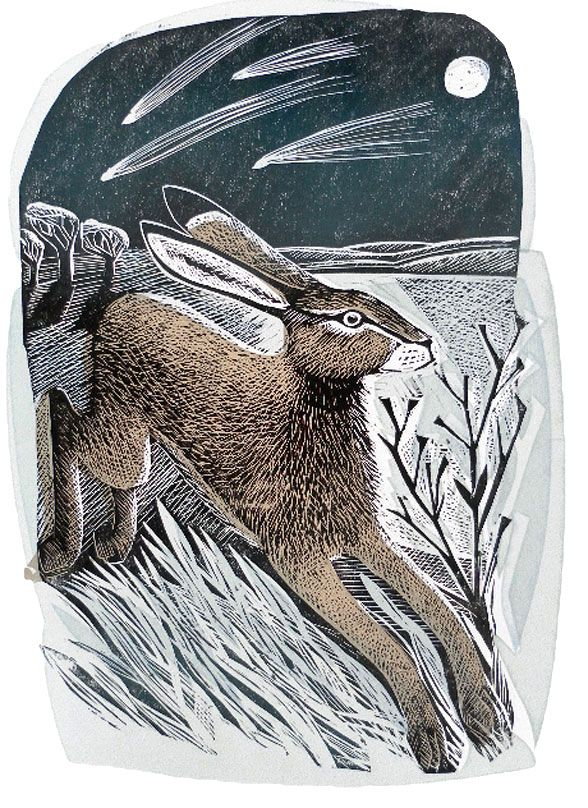 'Hare & Moon' by Angela Harding (silkscreen & linocut)