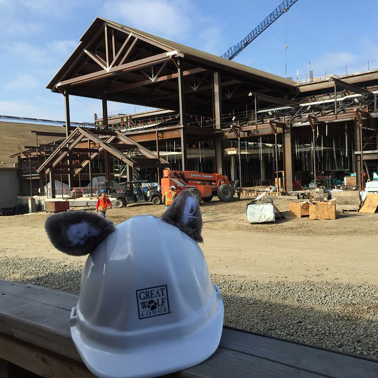 Great wolf lodge southern california is coming to garden - Great wolf lodge garden grove anaheim ...