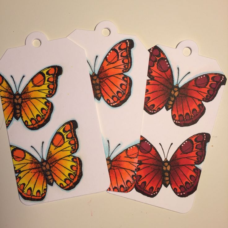 Butterfly tags.