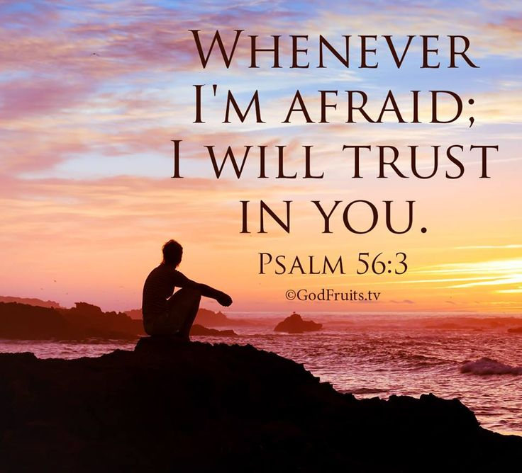 Bible Quotes On Faith And Trust: My Trust Is In You And You Alone! It Shall Never Falter