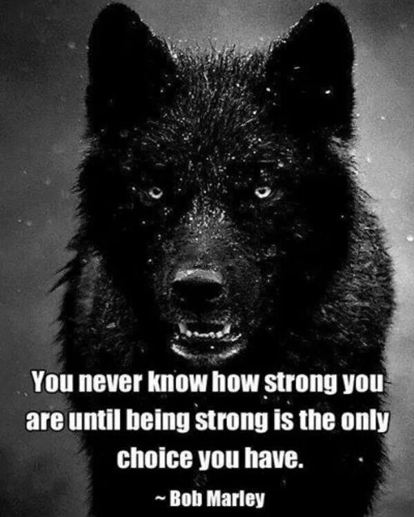 I am strongest when backed into a corner...