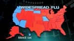 Widespread Flu Outbreak Rises to 41 States - Center for Disease Control reports increase in flu cases with jump from 31 states in U.S. - http://www.PaulFDavis.com health coach to strengthen your immune system, improve your diet, detox your body and uproot the misnomers of the modern medical industry so you can take back YOUR HEALTH (info@PaulFDavis.com)