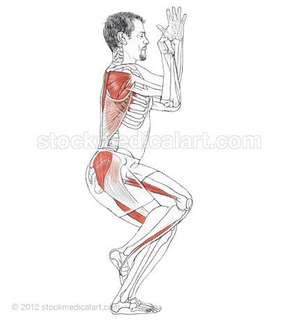 Garudasana stretches your shoulder, elbow, wrist, hip, knee and ankle muscles as it helps you with balance.