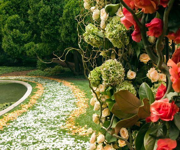 112 Best Freeze Dried Rose Petals Images On Pinterest