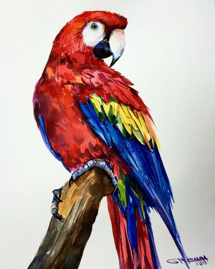 рисунок попугаев как живые чтоб