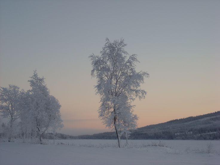 Åresjön 2008 av Magdalena Berger