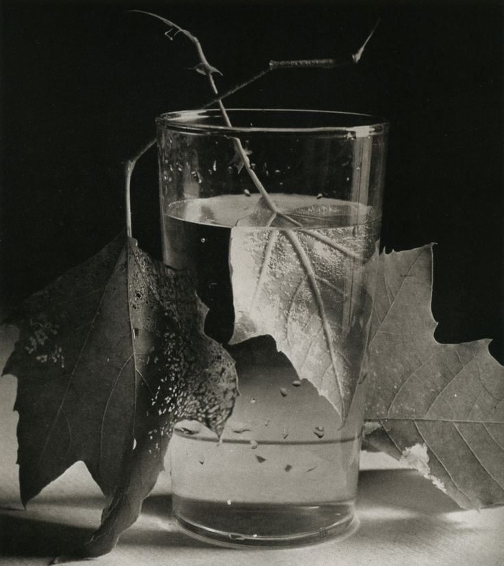 Horst P. Horst Still Life, New York, 1944 From Horst: Sixty Years of Photography