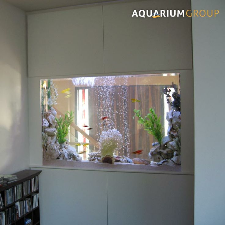 21 best images about book shelves on pinterest aquarium for Fish tank built into wall