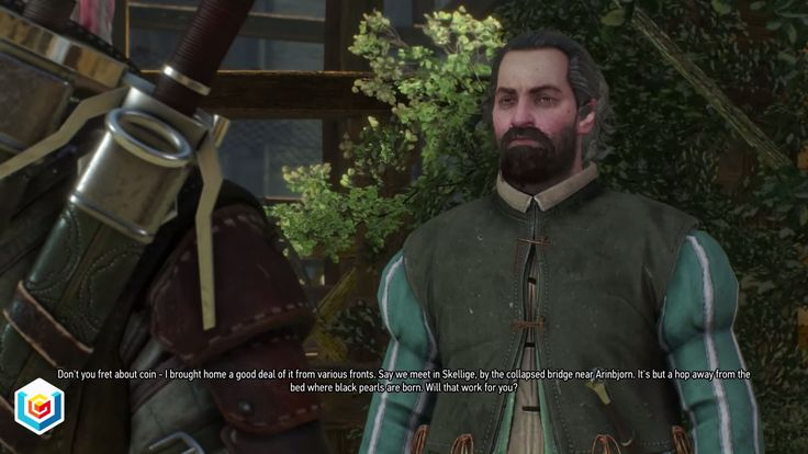 The Witcher 3 Wild Hunt Black Pearl Secondary Quest Walkthrough – VGFAQ
