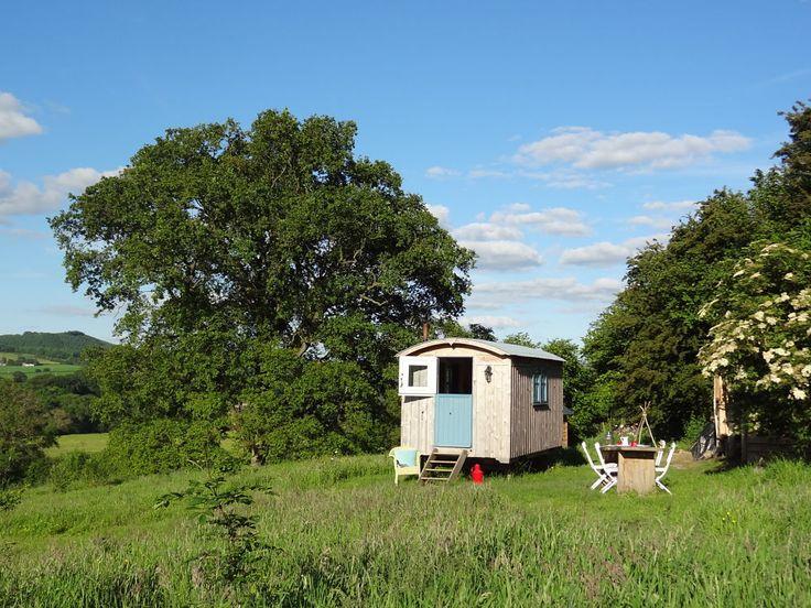 the Shepherd's Hut happy in the sunshine...
