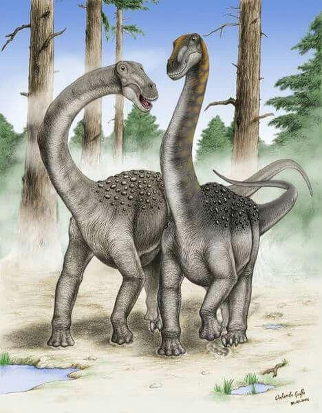 Resultado de imagen de maxakalisaurus topai