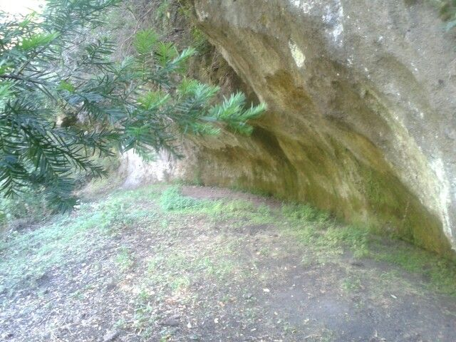 Cueva Milenaria Chile
