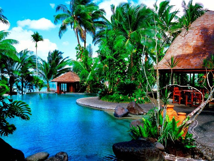 Take a dip in this very inviting pool at Sinalei Reef Resort & Spa, Samoa  www.islandescapes.com.au