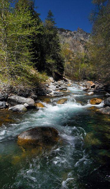 Beautiful river - fly fishing