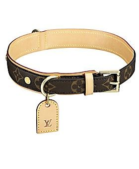 Louis Vuitton dog collar,..talk about FANCY!! Maybe one day Gizzo can have a collar as fancy as this...if hes a good boy