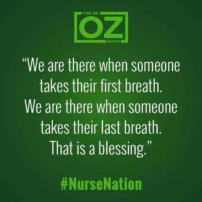 108 best Nursing stuff images on Pinterest Nursing schools - director of nursing job description