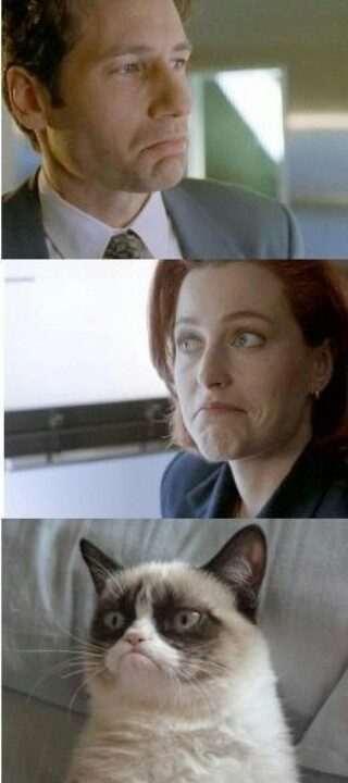 Tard, Mulder, & Scully - This is pretty perfect