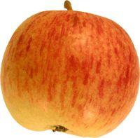 Pometets æblenøgle
