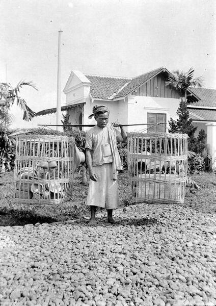 Een mandenverkoper in Bandoeng 1908.